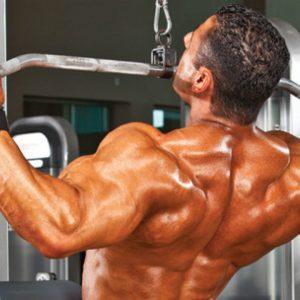 Добавки для начинающих: лучшие выборы для наращивания мышечной массы